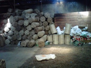 www.empinglimpung.com-00003